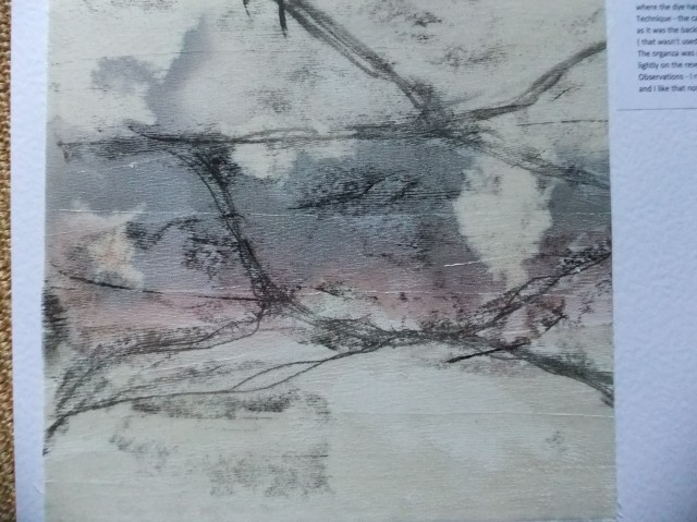 sample 4  - monoprint on sheer and hand painted base.