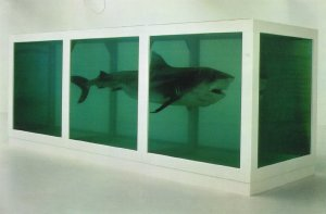 """Damien Hirst """"The Physical Impossibility of Death in the Mind of Someone Living"""" 1991.  Tiger shark, steel, glass and formaldehyde.  Photosource - http://www.wikipaintings.org"""