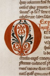 Taking the enhanced letters in manuscripts as inspiration some relevant words on the dictionary pages are outlined stitched to enhance their significance.